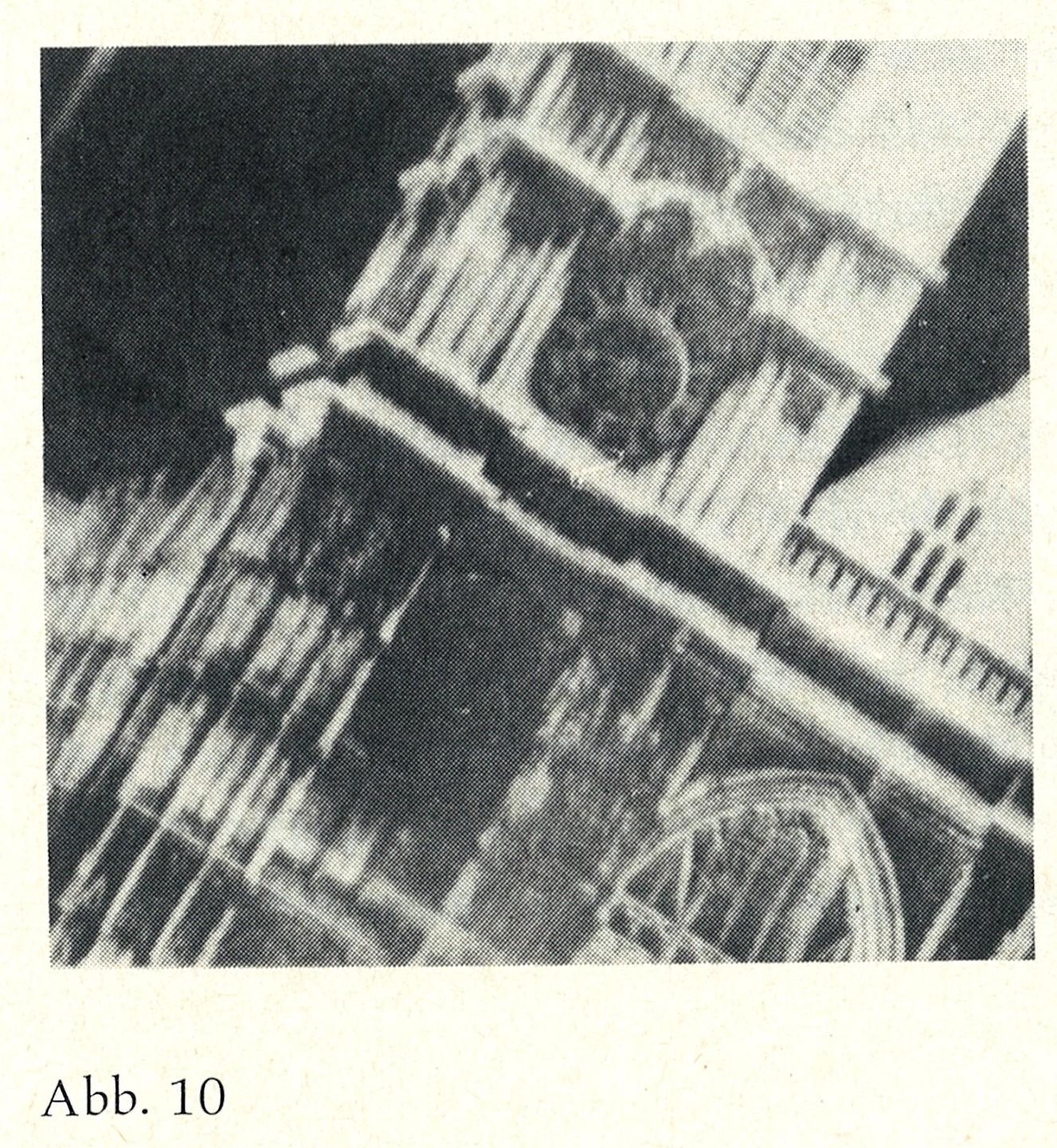 Eisenbud, Dr. Jule (Abb. 10) 17-01-20
